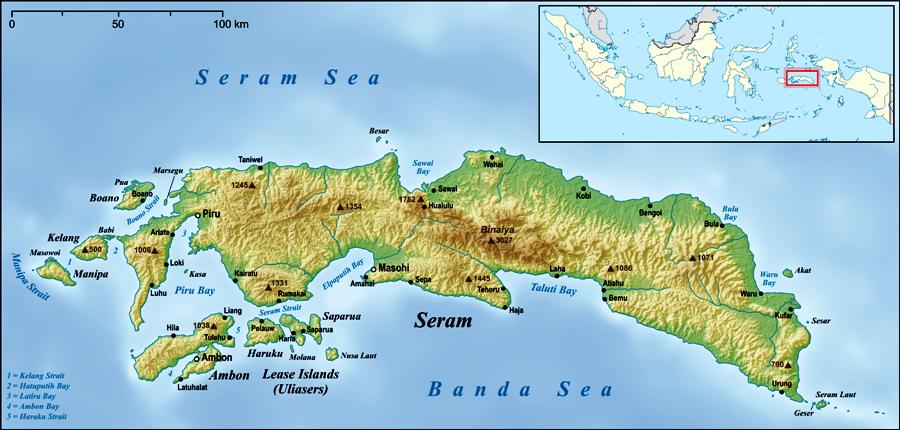 ILUSTRASI. Foto: id.wikipedia.org Hasil gambar untuk pulau seram 10 Tujuan Wisata di Pulau Seram Terpopuler - Tokopedia Blog tokopedia.com